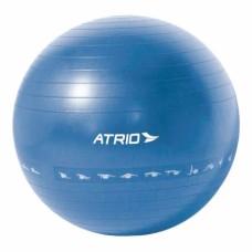 Bola de Ginástica Premium 55CM Diagrama de Exercício Material PVC Azul Atrio - ES214