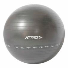 Bola de Ginástica Premium 75CM Diagrama de Exercício Material PVC Cinza Atrio - ES217